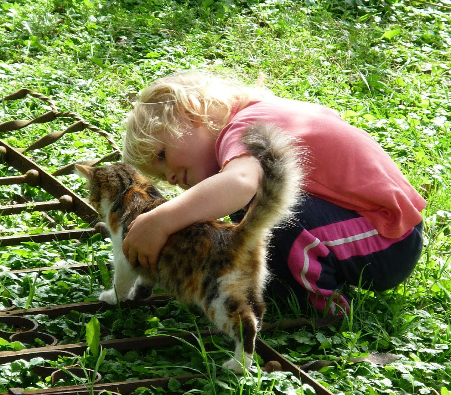 how to teach children compassion